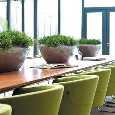 interior_proectirane_office