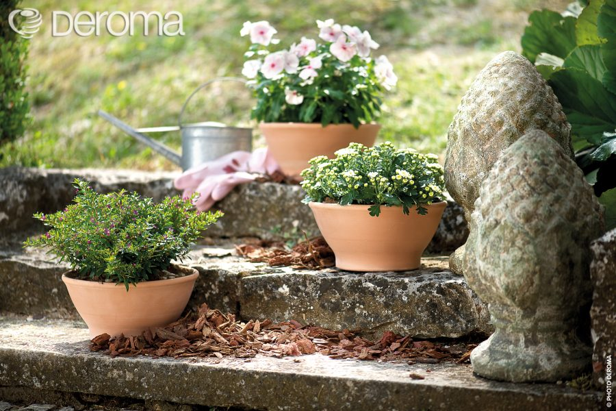 Керамична разлата саксия за цветя LIscia